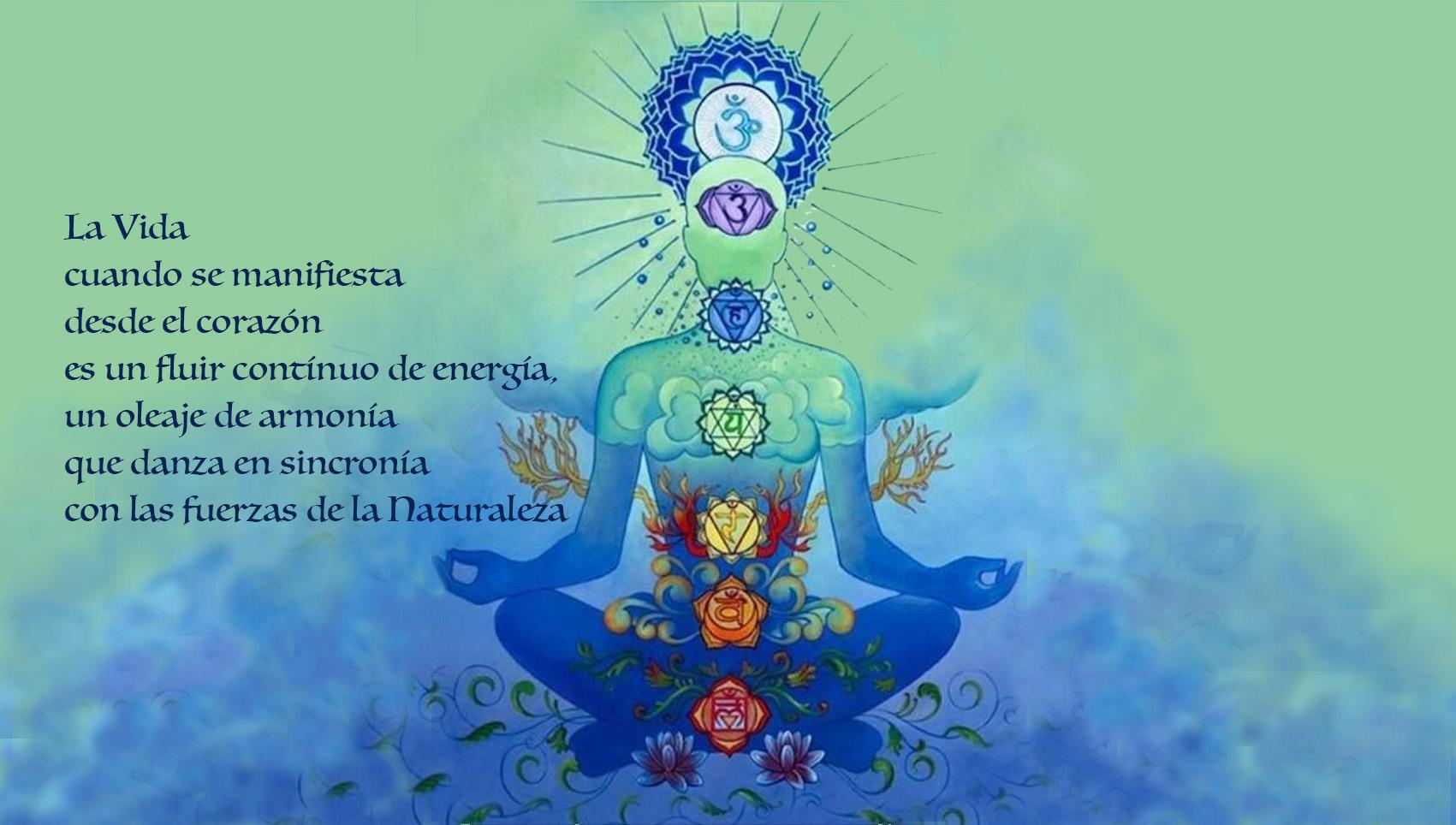 chakras y el yoga
